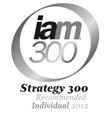 IAM300logo_Grey