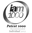 Patent1000individuallogo